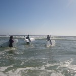 Surfing lesson - Barra beach