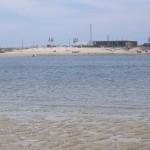 Riactiva Escola de desportos nauticos na ria de Aveiro - Portugal