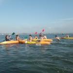 Aluguer kayak , Canoa ria de Aveiro - Riactiva