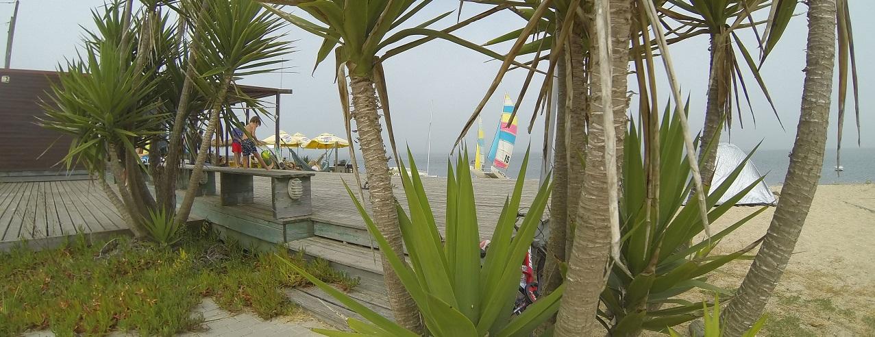 Escola desportos náuticos na ria de Aveiro - Riactiva